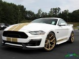 2019 Ford Mustang Shelby GT-H Coupe for sale