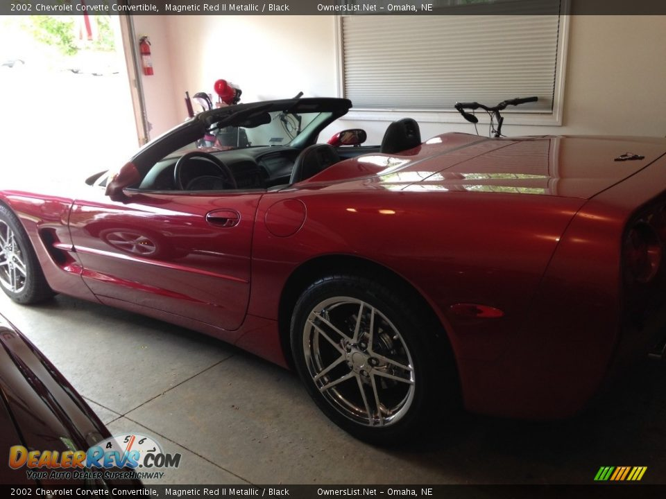 2002 Chevrolet Corvette Convertible Magnetic Red II Metallic / Black Photo #5