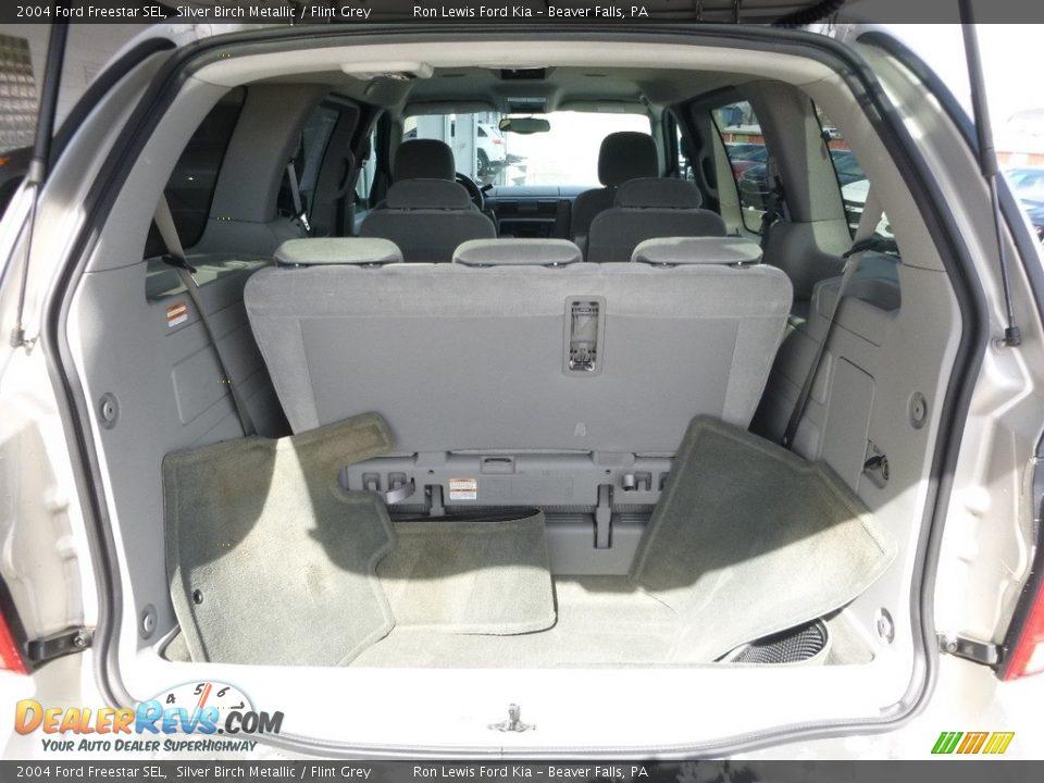2004 Ford Freestar SEL Silver Birch Metallic / Flint Grey Photo #4
