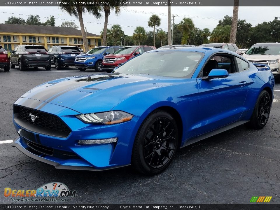 Front 3/4 View of 2019 Ford Mustang EcoBoost Fastback Photo #1