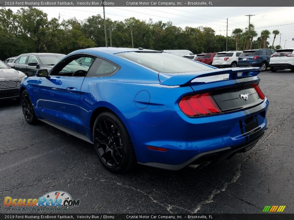 2019 Ford Mustang EcoBoost Fastback Velocity Blue / Ebony Photo #3