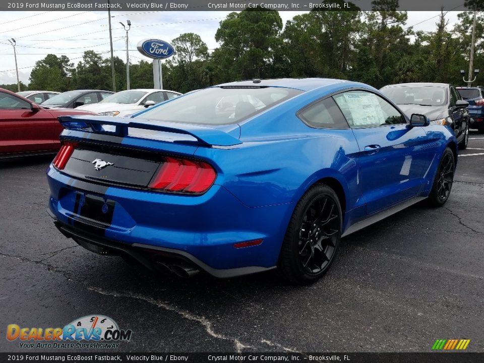 2019 Ford Mustang EcoBoost Fastback Velocity Blue / Ebony Photo #5