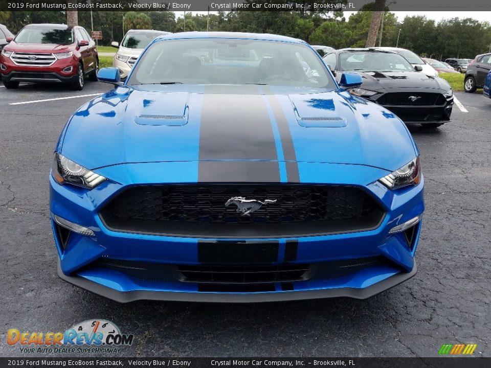 2019 Ford Mustang EcoBoost Fastback Velocity Blue / Ebony Photo #8