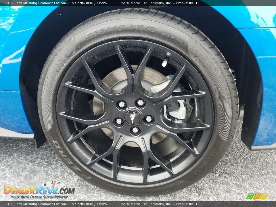 2019 Ford Mustang EcoBoost Fastback Wheel Photo #20