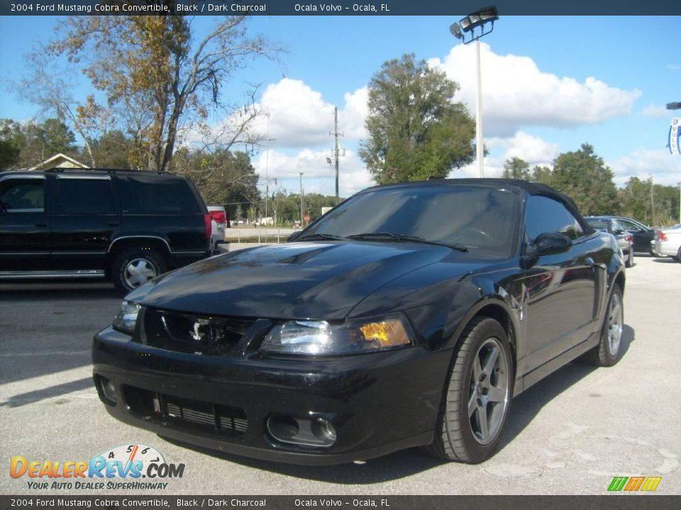 Used 2004 Ford Mustang 2004 Ford Mustang Cobra Convertible Black / Dark Charcoal Photo #7 ...