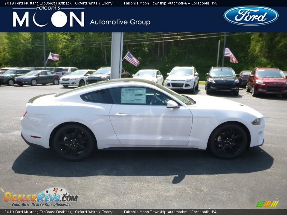2019 Ford Mustang EcoBoost Fastback Oxford White / Ebony Photo #1