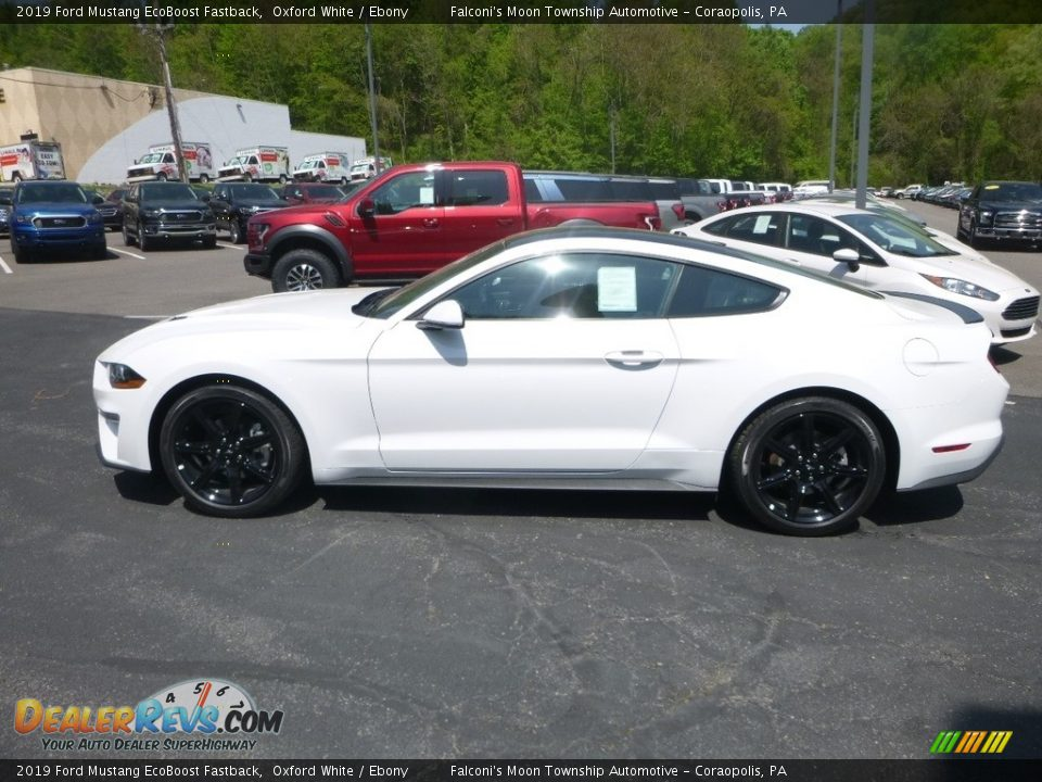 2019 Ford Mustang EcoBoost Fastback Oxford White / Ebony Photo #6