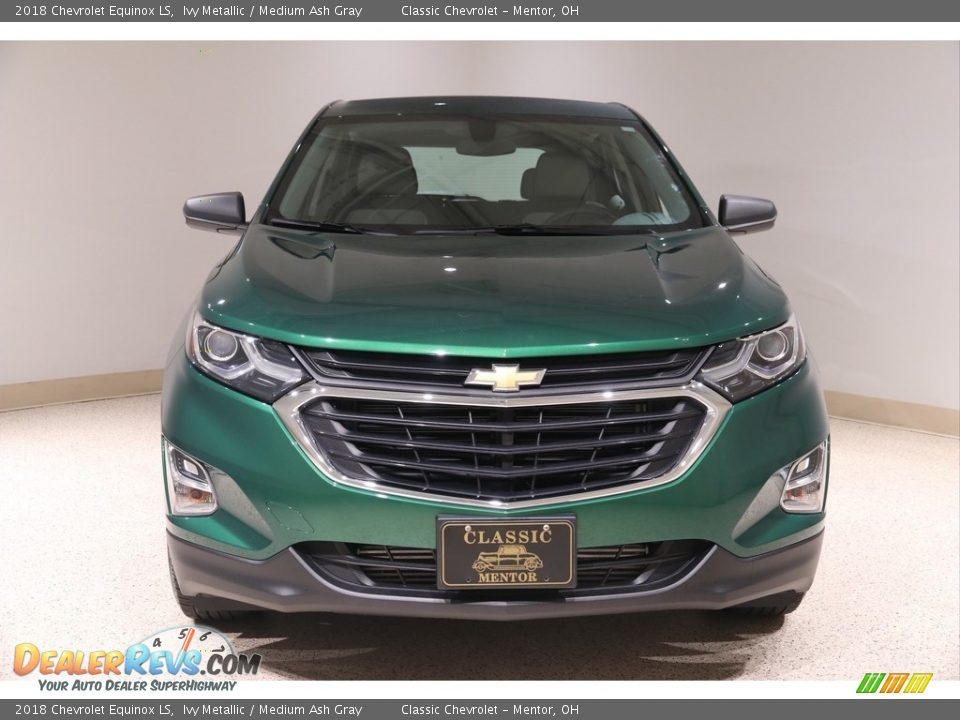 2018 Chevrolet Equinox LS Ivy Metallic / Medium Ash Gray Photo #2