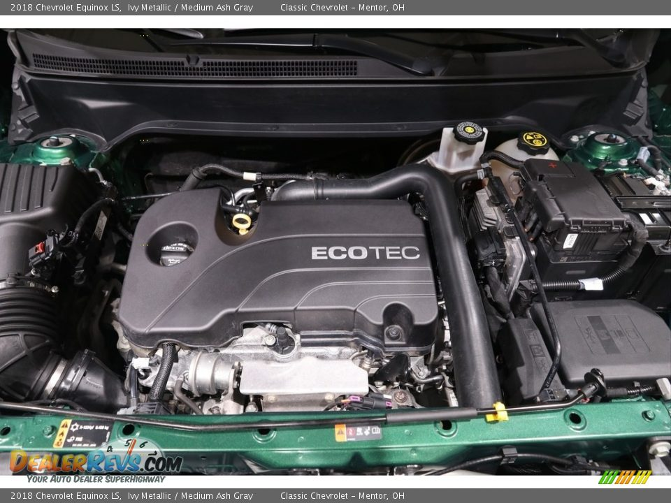 2018 Chevrolet Equinox LS Ivy Metallic / Medium Ash Gray Photo #18