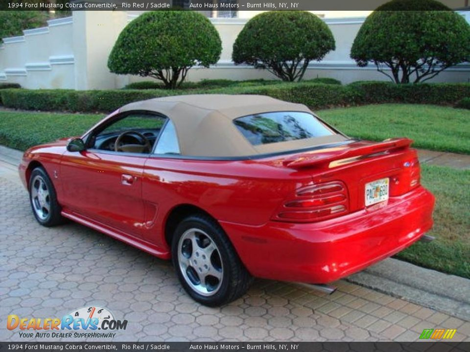 1994 ford mustang cobra convertible rio red saddle photo. Black Bedroom Furniture Sets. Home Design Ideas