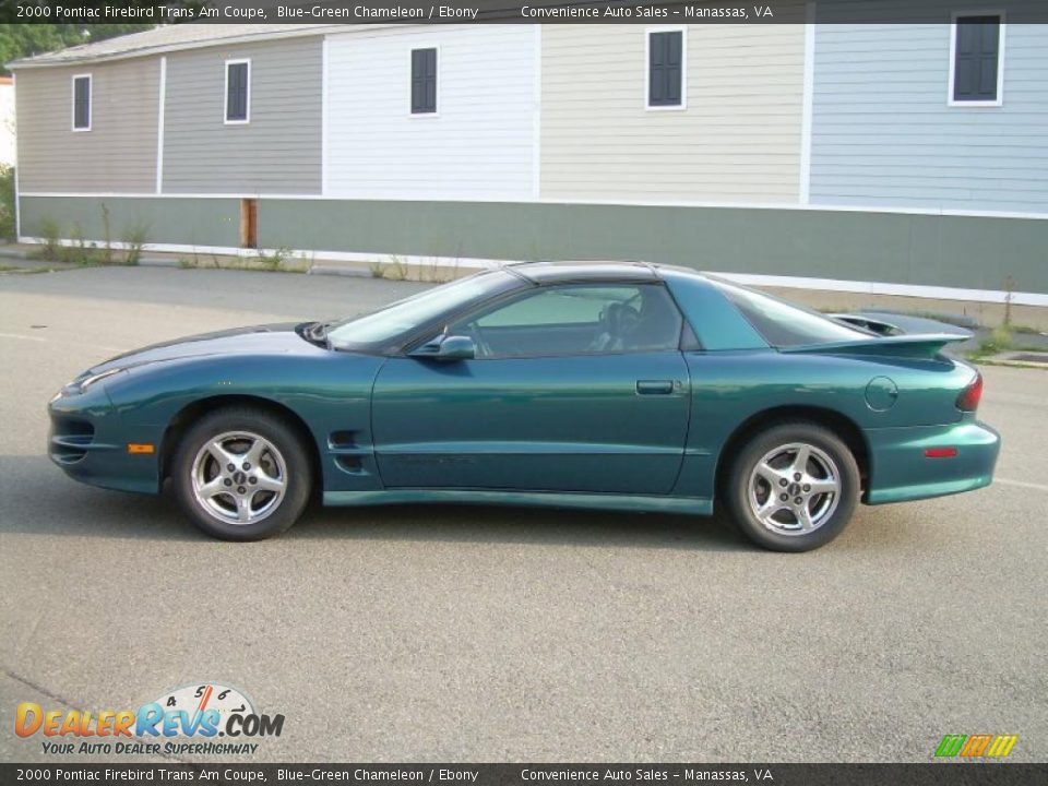 2000 pontiac firebird trans am coupe blue green chameleon ebony photo 5. Black Bedroom Furniture Sets. Home Design Ideas