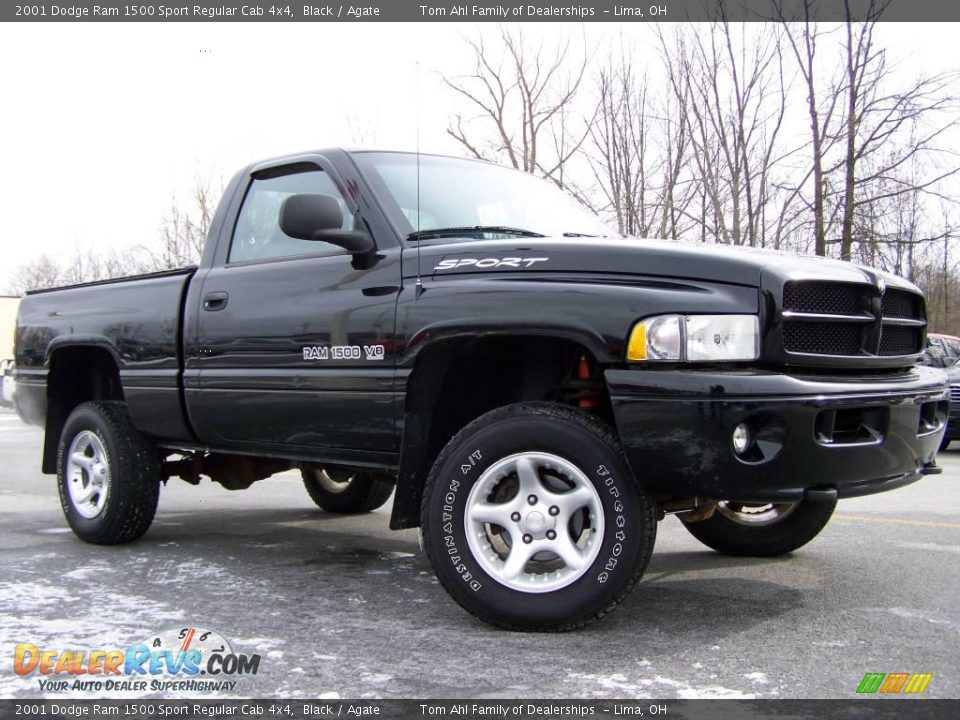 2001 dodge ram 1500 sport regular cab 4x4 black agate photo 7. Black Bedroom Furniture Sets. Home Design Ideas