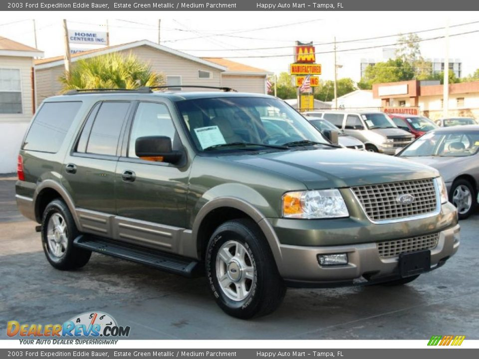 2003 ford expedition eddie bauer estate green metallic. Black Bedroom Furniture Sets. Home Design Ideas