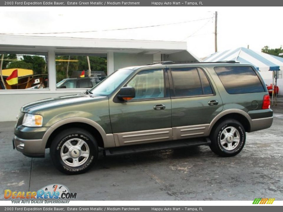 estate green metallic 2003 ford expedition eddie bauer. Black Bedroom Furniture Sets. Home Design Ideas
