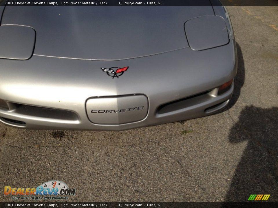 2001 Chevrolet Corvette Coupe Light Pewter Metallic / Black Photo #14