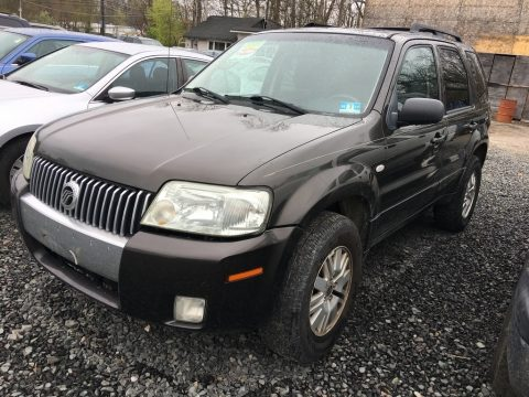 Charcoal Beige Metallic Mercury Mariner V6 Premier 4WD.  Click to enlarge.