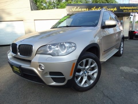 Orion Silver Metallic BMW X5 xDrive 35i Premium.  Click to enlarge.