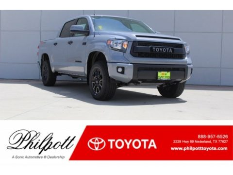 Cement Toyota Tundra SR5 CrewMax 4x4.  Click to enlarge.