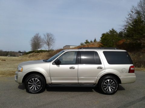White Gold Ford Expedition XLT 4x4.  Click to enlarge.