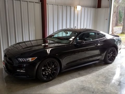 Shadow Black Ford Mustang GT Premium Coupe.  Click to enlarge.