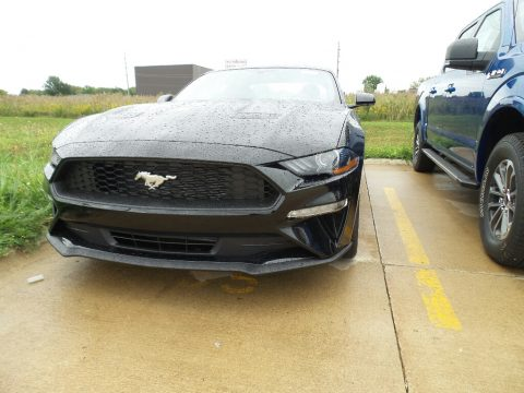 Shadow Black Ford Mustang EcoBoost Premium Fastback.  Click to enlarge.