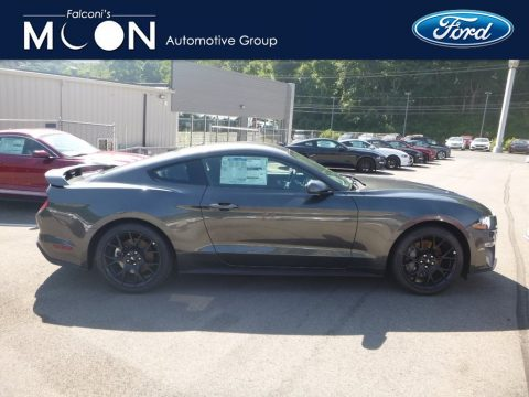 Magnetic Ford Mustang EcoBoost Fastback.  Click to enlarge.