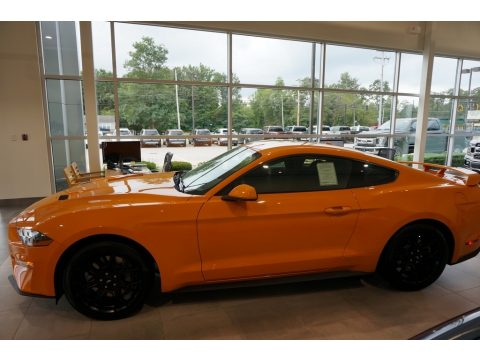 Orange Fury Ford Mustang EcoBoost Fastback.  Click to enlarge.