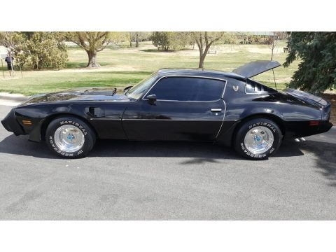 Starlight Black Pontiac Firebird Turbo Trans Am.  Click to enlarge.