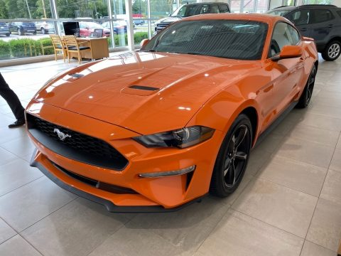 Twister Orange Ford Mustang EcoBoost Fastback.  Click to enlarge.