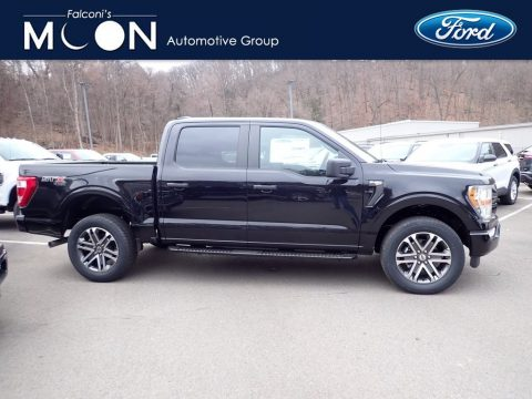 Agate Black Ford F150 STX SuperCrew 4x4.  Click to enlarge.