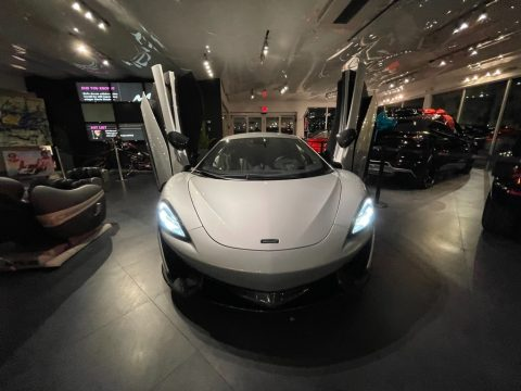 Ice Silver McLaren 570S Coupe.  Click to enlarge.