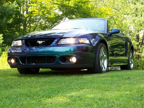 used 2004 ford mustang cobra convertible for sale stock 0070 dealer car ad. Black Bedroom Furniture Sets. Home Design Ideas