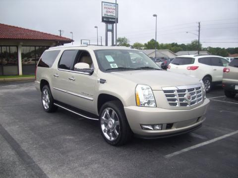 new 2010 cadillac escalade esv platinum awd for sale. Black Bedroom Furniture Sets. Home Design Ideas