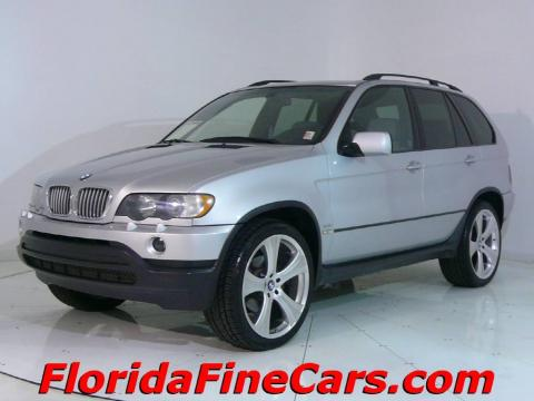 Titanium Silver Metallic BMW X5 4.4i.  Click to enlarge.