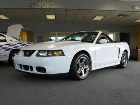 Used 2004 Ford Mustang Cobra Convertible For Sale Stock